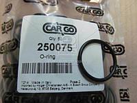 Кольцо (пр-во CARGO) 250075