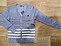 Кардиган для мальчиков оптом, Nice Wear ,4-12 лет., GF-892, фото 2