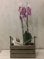 Дерев'яний ящик для квітів, подарунків