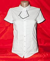 Рубашка женская белая на пуговицах, размеры S-2XL Серии
