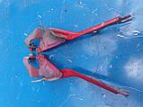 Петли капота Mazda Premacy 1998-2005г.в., фото 2