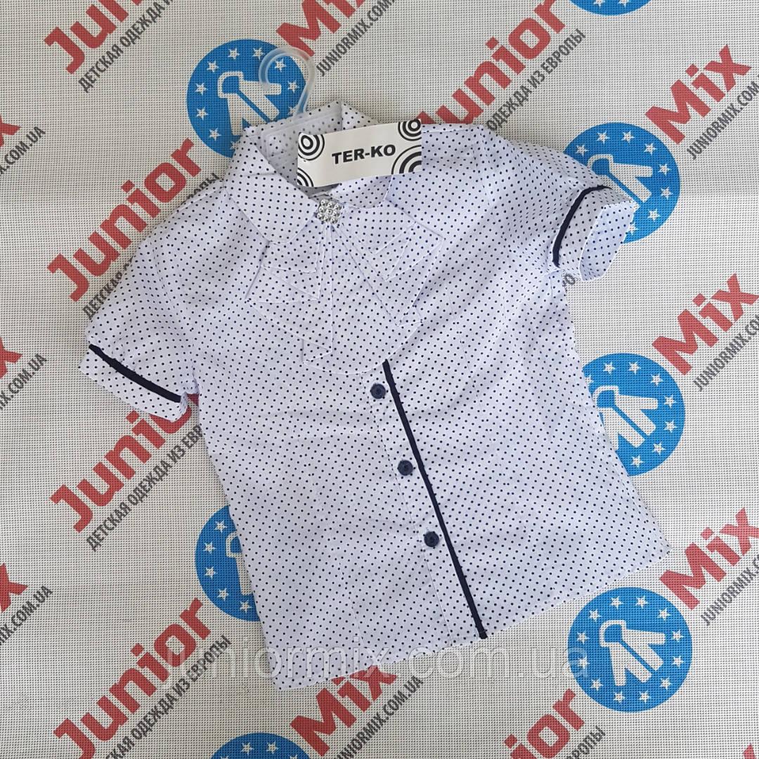 Детская школьная блузка для девочек  оптом   TER-KO
