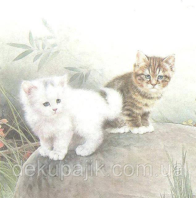 Салфетка декупажная Котята на камне