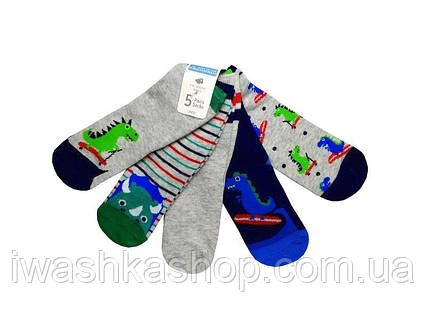 Носки с динозаврами для мальчика на 6-12 мес., Primark р. 0-18,5
