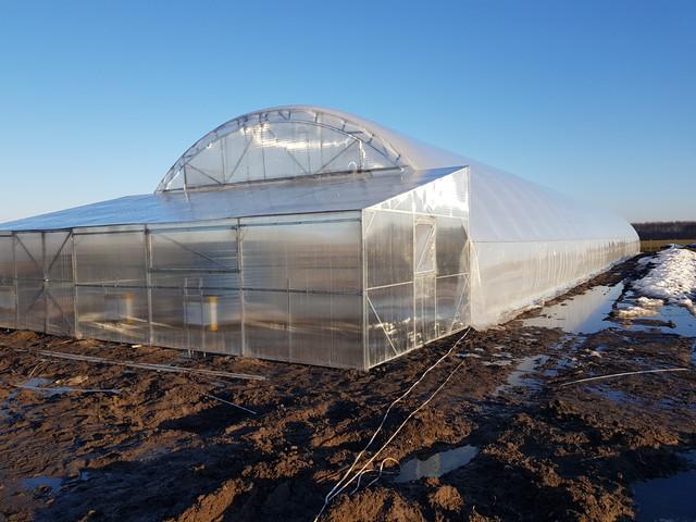теплицы фермерские под двойную пленку