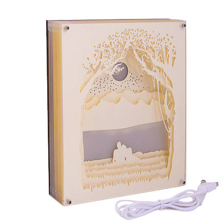 Светильник картина 3D Романтика Белый, фото 2