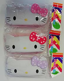 Пластмасовий Пенал Кітті КМ-8853 85528 Китай