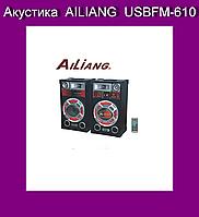 Акустика  AILIANG  USBFM-610!Опт