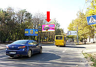 Щит г. Херсон, 40-летия Октября ул. / ул. Тираспольская, возле парка им. Ленинского Комсомола, гусь, над дорогой, в центр