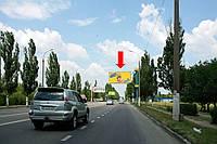 Щит г. Херсон, Николаевское шоссе, возле газовой заправки, гусь, над дорогой, из центра
