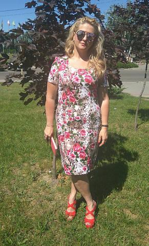 Платье хлопок сатин джинс лето Пл 035-7 , роза-питон