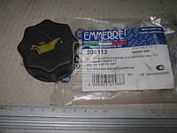Пробка горловины маслозаливной EUROCARGO (1991>) (пр-во Emmerre) 906112
