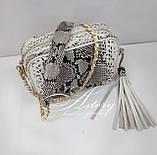 Женская светло-серая сумочка STELLA из питона на цепочке, фото 2