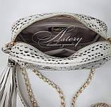 Женская светло-серая сумочка STELLA из питона на цепочке, фото 3