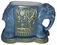 Цветочник серый слоник