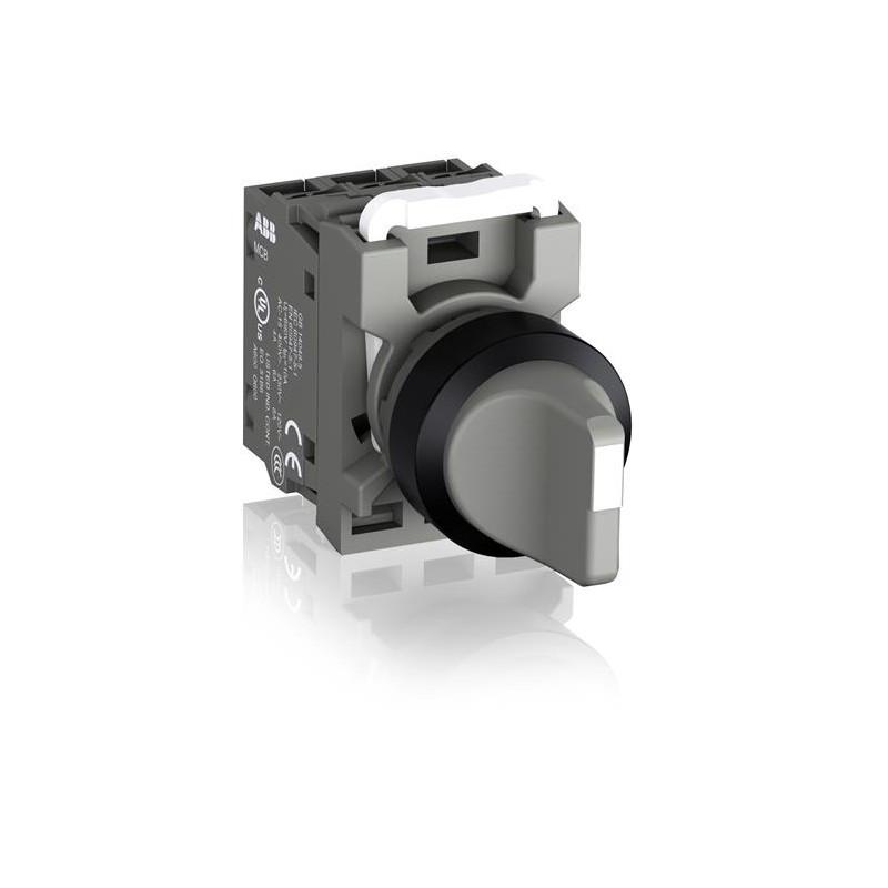 ABB C2SS2-10U-11 Переключатель, 1SFA619201R1077