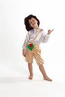 Карнавальный костюм для мальчиков на праздник «Грибок»