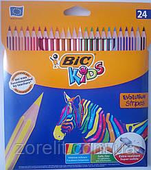 Кольорові олівці Bic Stripes (24 кольорів)