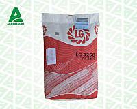 Семена кукурузы ЛГ 3258, Лимагрейн