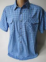 Чоловічі літні сорочки батального розміру, фото 1