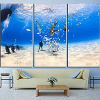 Картина - Дайвер и подводный мир, для декора гостиной