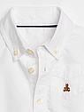Рубашка боди Oxford Gap для мальчика белый, нарядная рубашка для новорожденного 3-6 мес/58-68 см, фото 3