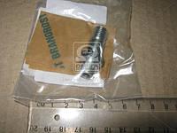 Перепускной клапан (пр-во Bosch) F 00N 350 256