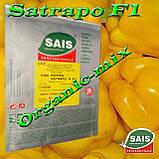 САТРАПО F1 / SATRAPO F1, семена желтого перца, проф. пакет 100 семян ТМ Sais (Италия), фото 2
