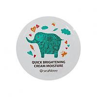 Крем для лица SeaNtree Quick Brightening Cream Sample