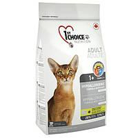 1st Choice (Фест Чойс) с уткой и картошкой (2,72 кг) гипоаллергенный сухой корм для котов