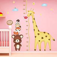 Ростомер MirAks HM-5371 (На стену/жираф/180 см)