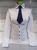 Блузка женская белая (школа/офис) лето 30016 (XS-XL) Китай оптом