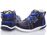 Детские ботинки для мальчиков Clibee-apawwa (размеры 18 - 23 )