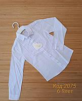 Школьная блуза с жабо для девочек 6-9 лет.Оптом. Турция. (2075)