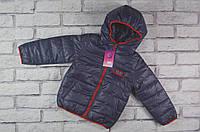 Курточка детская демисезонная