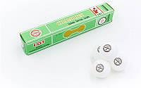 Мяч для настольного тенниса CHAMPION 101 в упаковке