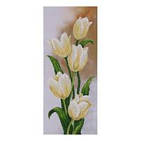 """Cхема для вышивки бисером  """"Белые тюльпаны"""" Т-0503"""