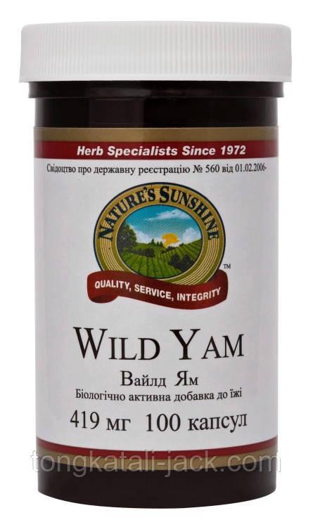 Вайлд Ям - Дикий Ямс (Wild Yam)