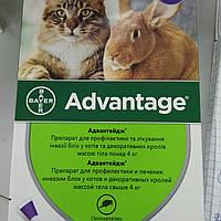 Капли Адвантейдж 80 для кошек и кроликов от 4 кг против блох (Bayer)