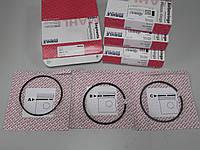 Комплект колец поршневых Fiat Doblo 1,9 с 2001 г.в., фото 1