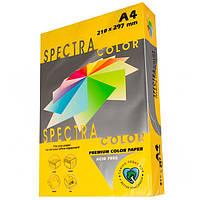 Бумага цветная А4 Spectra Color   80 г/м2 50 л интенсив золотой IT 200 Gold