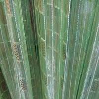 Тюль, гардина, органза ткань для тюли зеленая