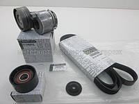 Комплект ремень+натяжной механизм+ролик (+AC) на Рено Трафик 1.9 dCi - Renault (оригинал) 117200713R, фото 1