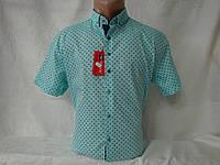 Сорочки чоловічі в Україні. Порівняти ціни 8cb4f11b6956d