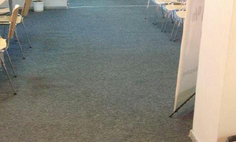 Химчистка ковралина и мебели от компании Евроуборка 4