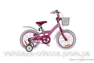 COMANCHE FLORIDA FLY W16