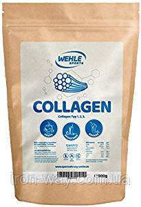 WEHLE Sports Collagen 1-2-3 typ g 500