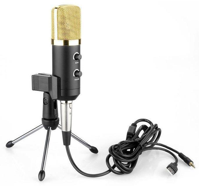 Конденсаторный микрофон ELIMA MK-F100TL BLACK GOLD