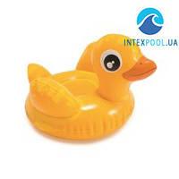 Детская надувная водная игрушка Intex 58590-DD «Утенок Дакотта», 22 х 18 см