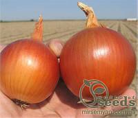 """Семена лука """" Бонус"""" F1  250 000 сем., Takii Seeds"""